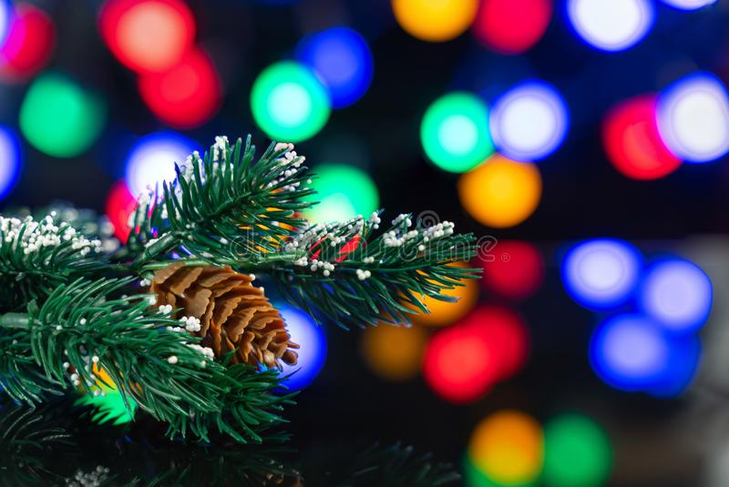 Branch of the Christmas tree with a lump on the black table. A branch of the Christmas tree with a lump on a black table with a beautiful reflection and colored royalty free stock image