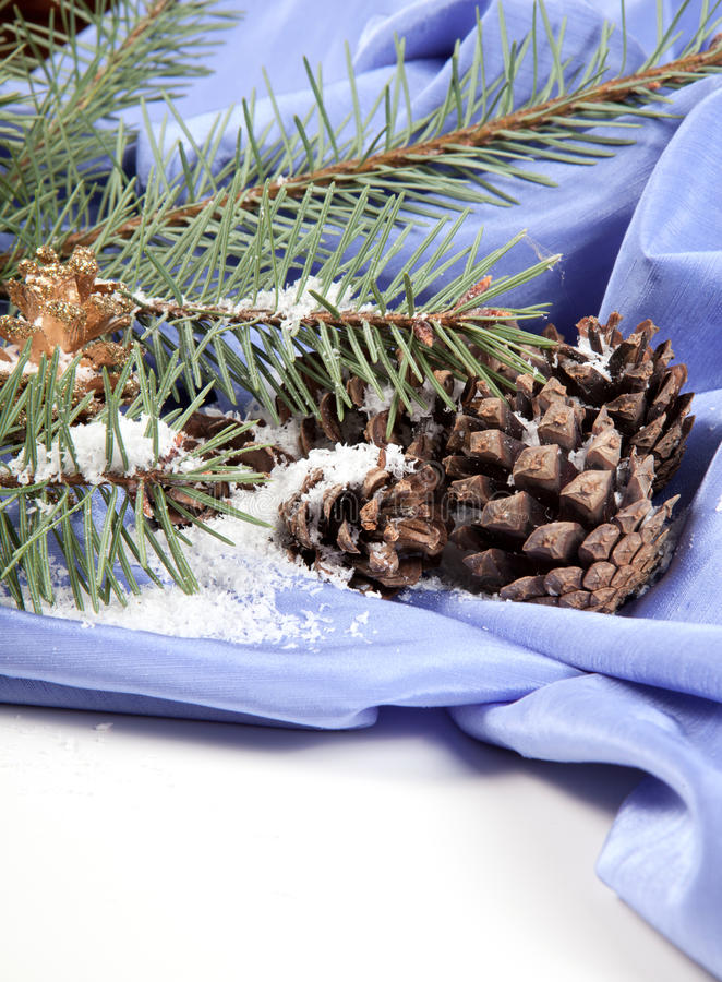 Branch Of Christmas Tree With Pine Cone Royalty Free Stock Photo