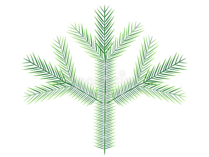 A branch of an evergreen coniferous plant - spruce or pine, for decoration of cards, sites and pages for Christmas and New Year. Stock illustration stock illustration