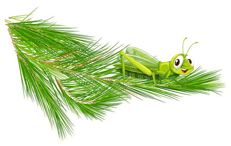 Branch with a happy grasshopper. Illustration royalty free illustration