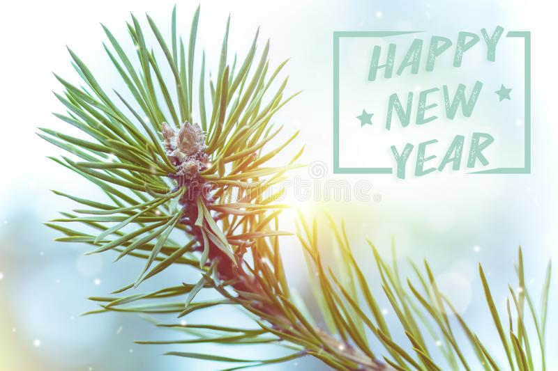 Branch of the pine tree. Christmas background with the words Happy New Year. Copy space royalty free stock image