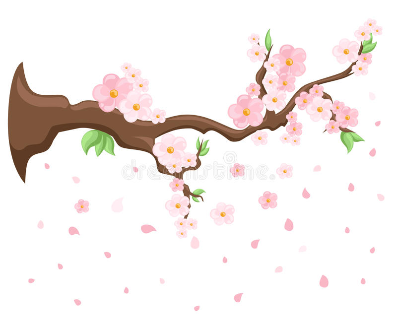 Branch of pink blossoming sakura. Japanese cherry tree. Vector decoration branches with flowers, spring Flat design style i vector illustration