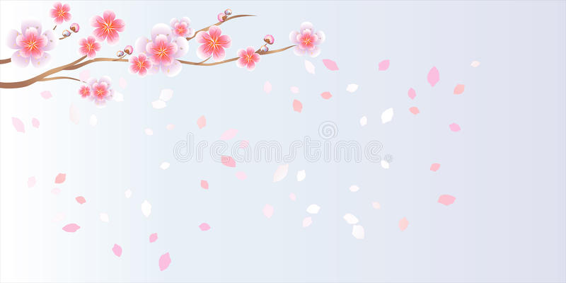 Branch of sakura with flowers. Cherry blossom branch with petals vector illustration