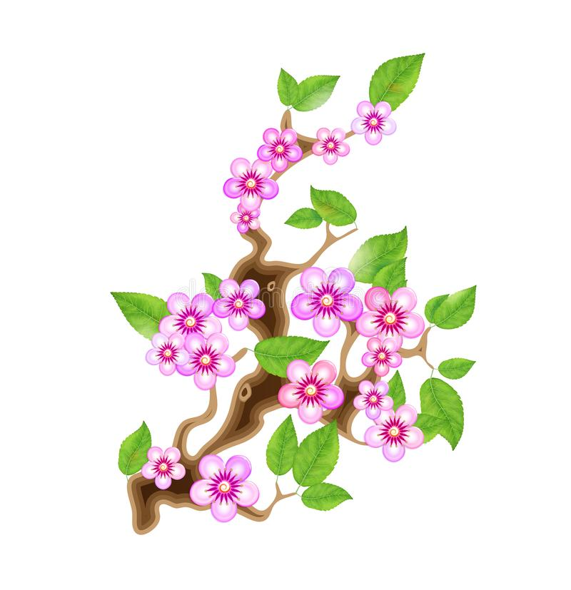 Branch sakura, illustration cherry blossom, with flowers in anime style. Unorthodox East Asian decoration tradition in. Partially animated stylistic solution vector illustration