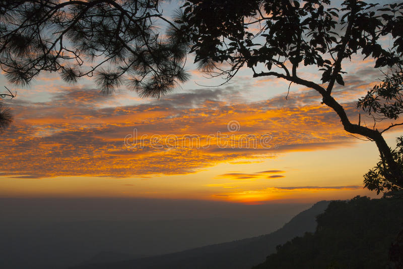 Branch silhouette on twilight sunset and mountain background. Beautiful branch silhouette on twilight sunset and mountain background royalty free stock photo