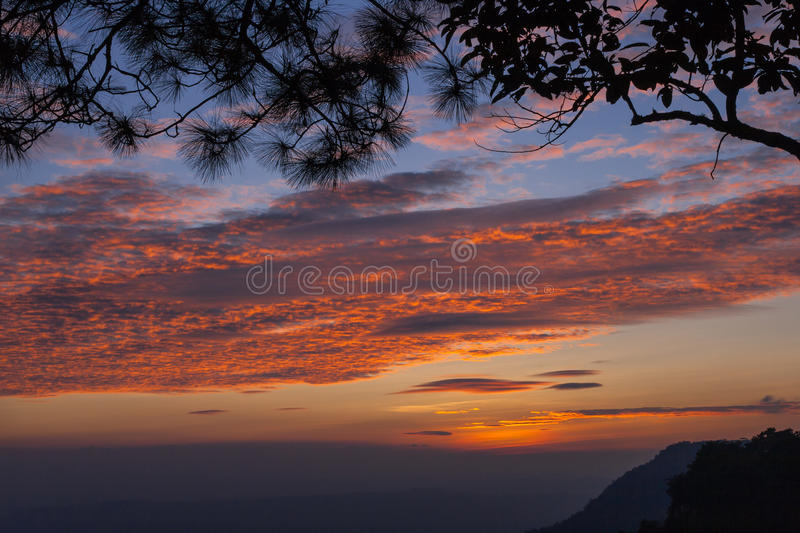 Branch silhouette on twilight sunset and mountain background. Beautiful branch silhouette on twilight sunset and mountain background royalty free stock image