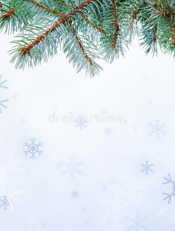 Download Branch and snowflakes stock image. Image of creative - 16680711
