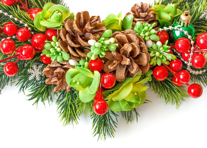 Branch of spruce with cones, berries and flowers stock images