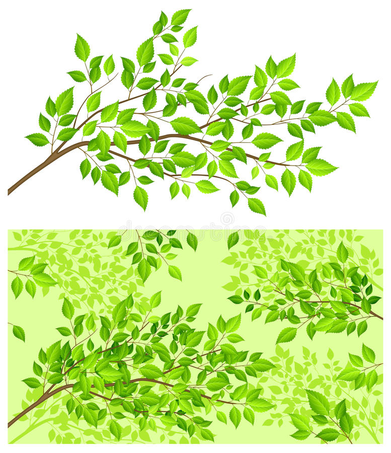 Download Branch Tree With Green Leaf Stock Vector - Illustration of illustration, background: 18976551