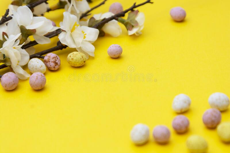 Branch of white flowers on yellow background with candy, easter chocolate eggs. Easter mock up. Minimalistic Spring background stock photo