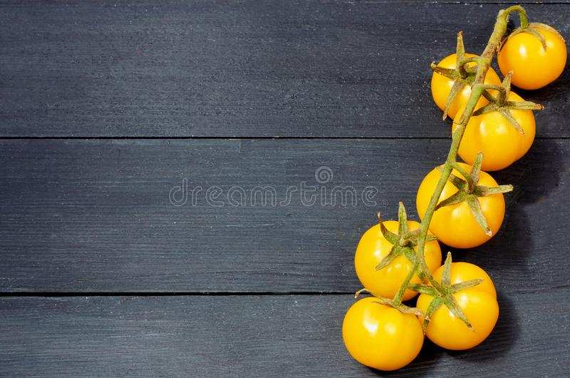 A branch of yellow cherry tomatoes isolated on the black wooden background with copy space for text stock image