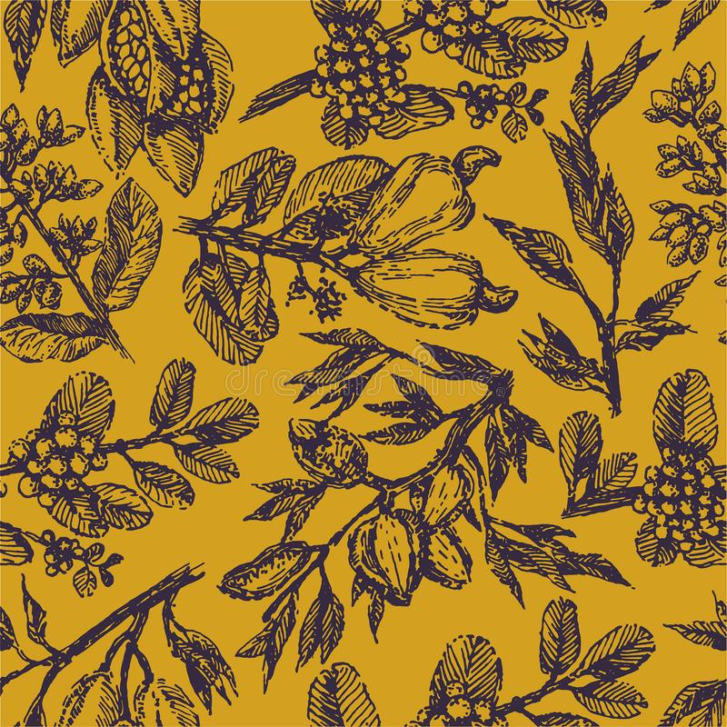 Branche avec le croquis d'illustration d'aspiration de main d'usine de pistaches, de graines de cacao, d'amandes, de noix de cajo illustration libre de droits