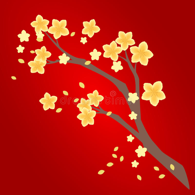 Branche d'abricot de jaune de l'AMI de Hoa illustration libre de droits