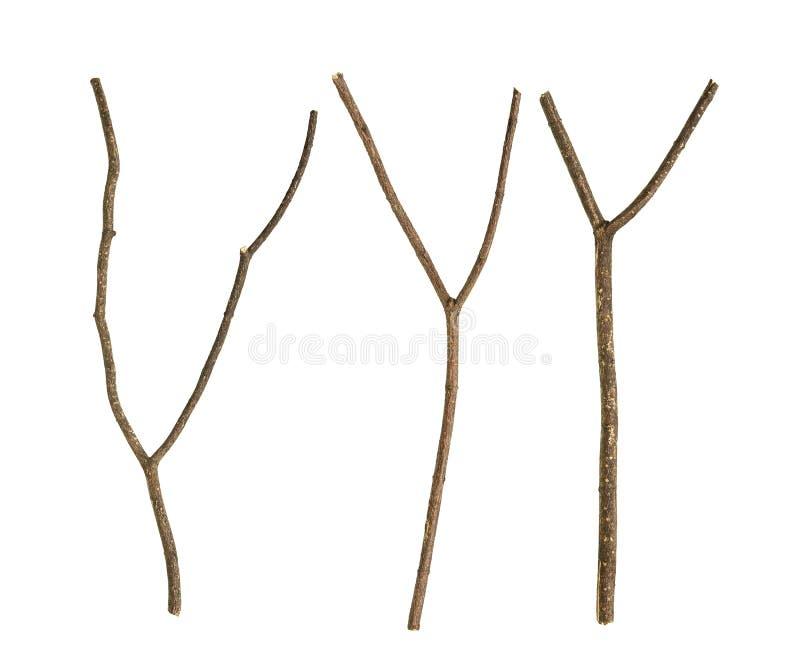Branche d'arbre sèche photographie stock