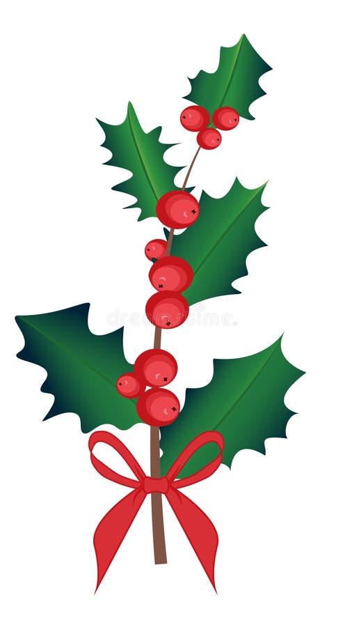 Branche d'Ilex avec la baie et les feuilles, ensemble de gui Le symbole de Noël et de la nouvelle année, vecteur a isolé le dessi illustration stock