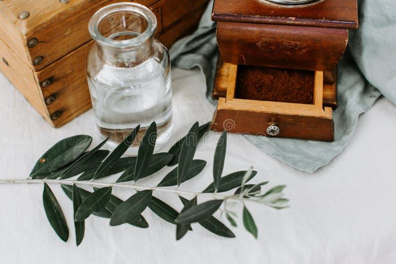 Branche d'olivier, café sur le montant rustique image libre de droits