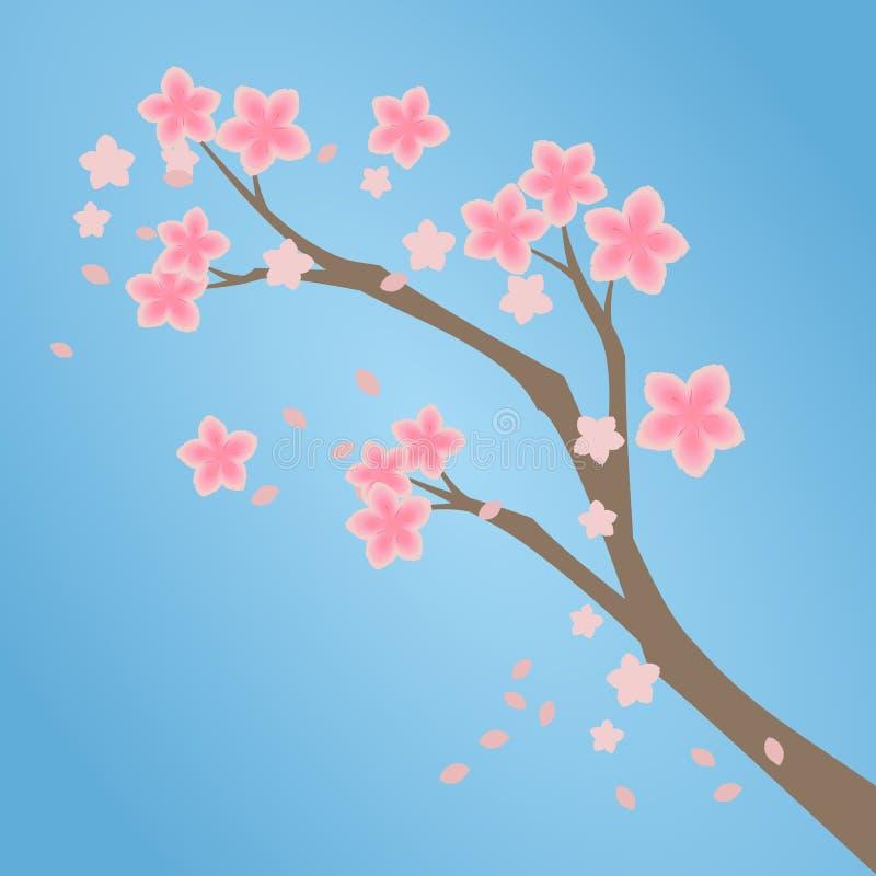 Branche de fleurs de cerisier de rose de Sakura illustration de vecteur