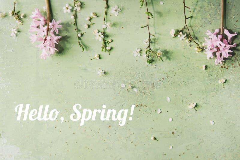 Branche de floraison de ressort photo stock