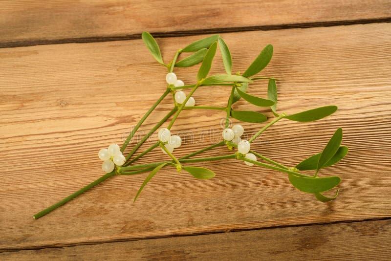 Branche de gui avec des baies photographie stock