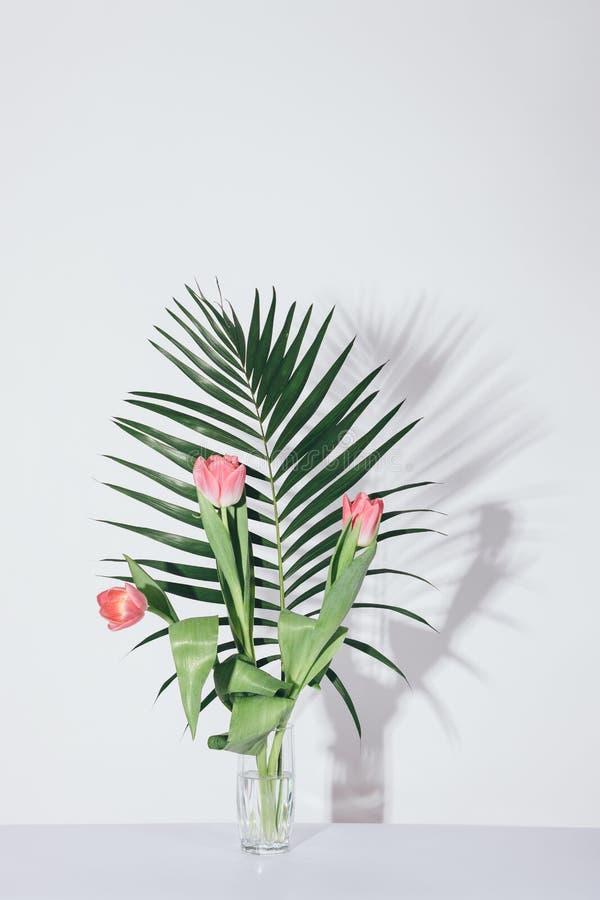 Branche de paume avec les tulipes roses dans le vase en verre transparent photographie stock libre de droits