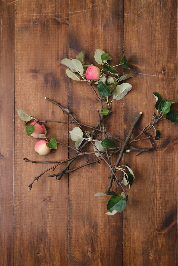Download Branche De Pommier Sur La Table Photo stock - Image du automne, nourriture: 77150744