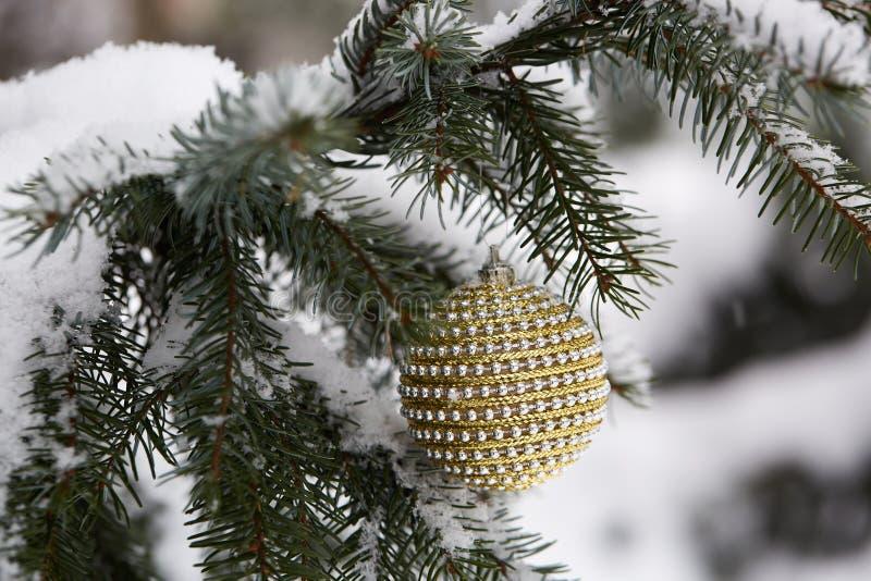 Branche de sapin avec des jouets de Noël photographie stock libre de droits