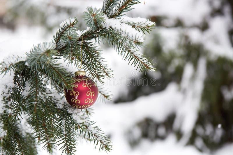 Branche de sapin avec des jouets de Noël photo libre de droits