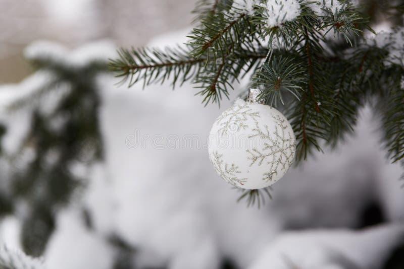 Branche de sapin avec des jouets de Noël images stock