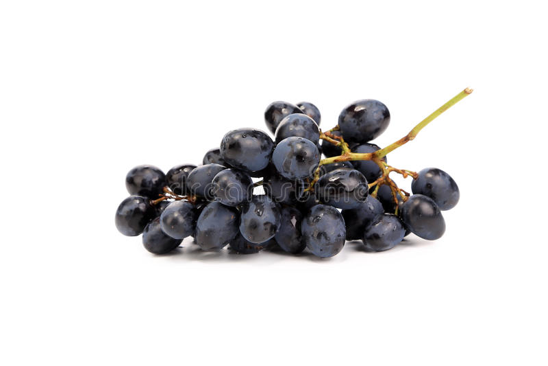Branche des raisins mûrs noirs. image stock