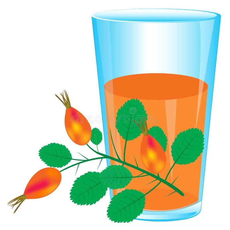 Branche du rose et du jus sauvages illustration stock