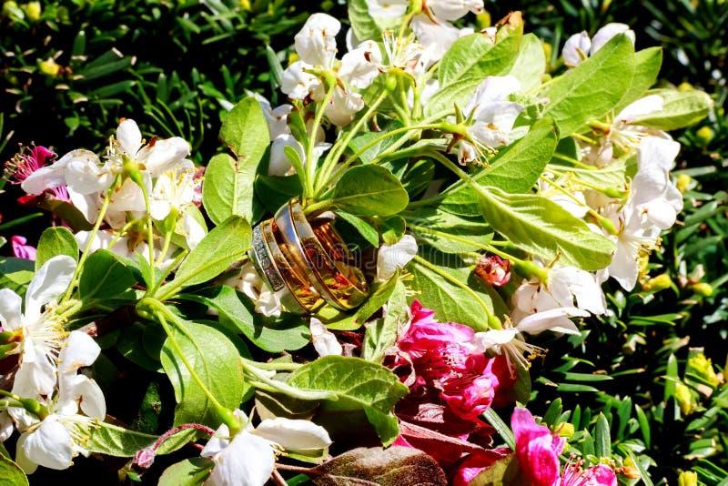Branche fleurissante avec la surface sensible blanche Déclaration de l'amour, ressort salutation Bouquet de mariage, image libre de droits