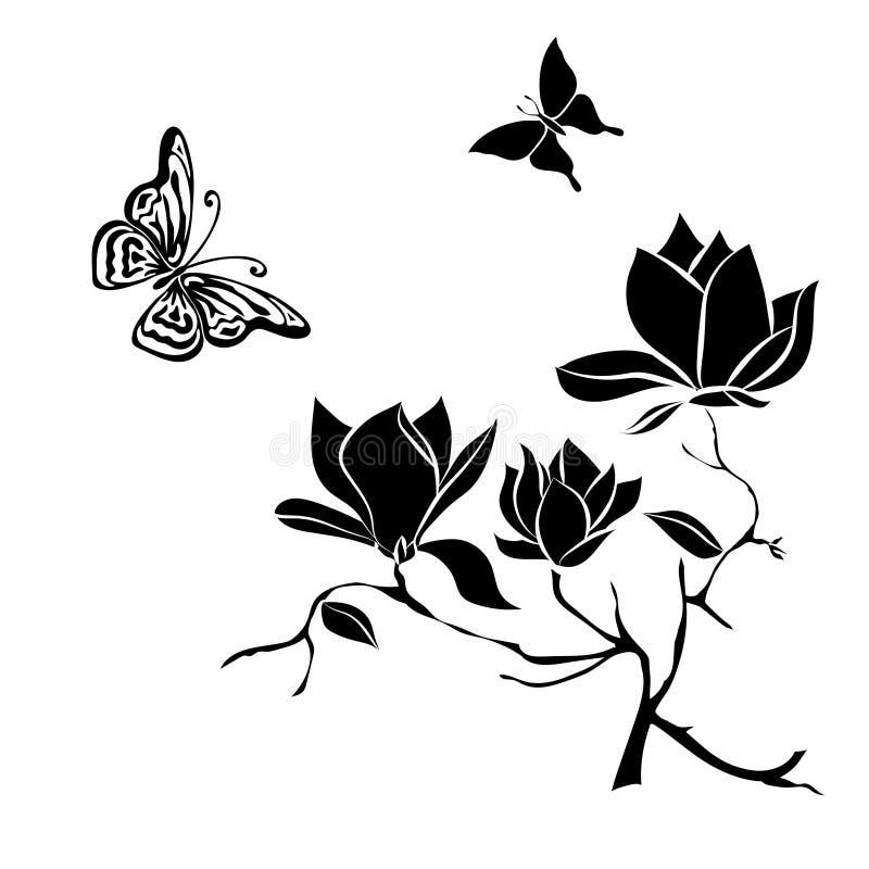 Branche fleurissante de magnolia sur l'illustration blanche de vecteur de fond illustration de vecteur