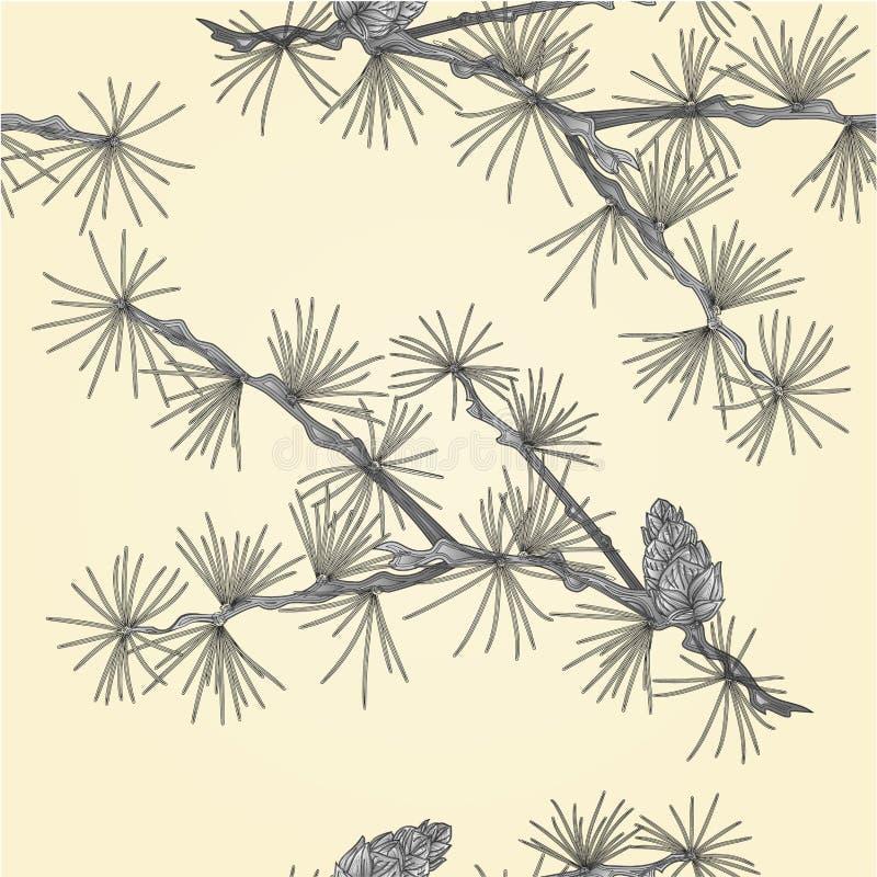 Branche sans couture de tamarack de mélèze de texture en tant que vecteur de gravure de vintage illustration libre de droits
