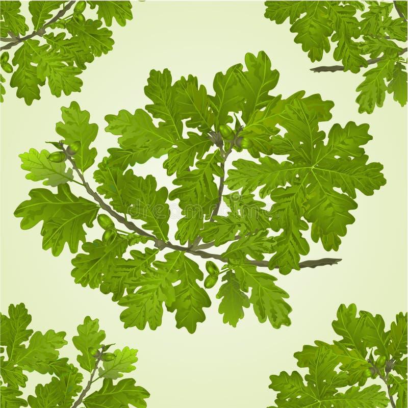 Branche sans couture de texture de chêne avec le vecteur de fond naturel de glands illustration de vecteur