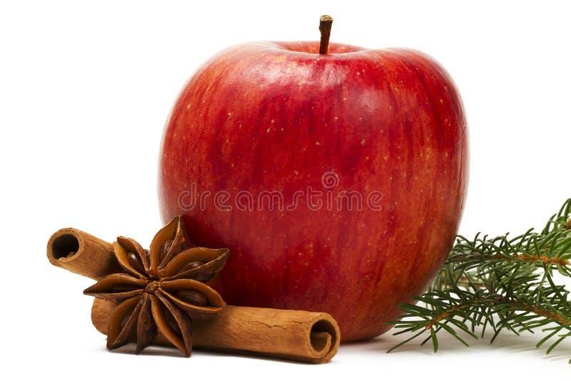 Branchement de bâtons de cannelle d'anis d'étoile d'Apple photos stock