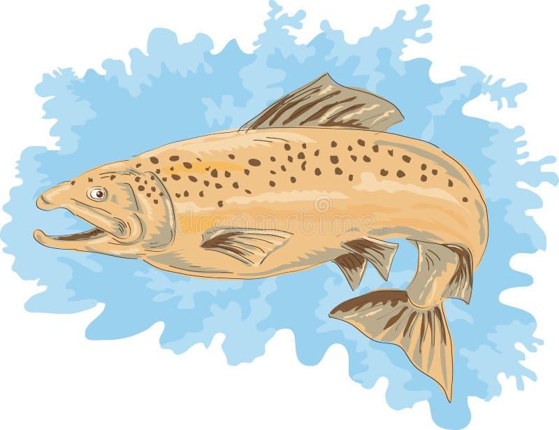 Brancher repéré de truite brune illustration de vecteur
