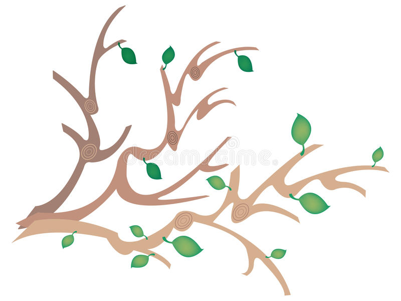 Download Branches stock illustration. Illustration of brown, green - 19548691