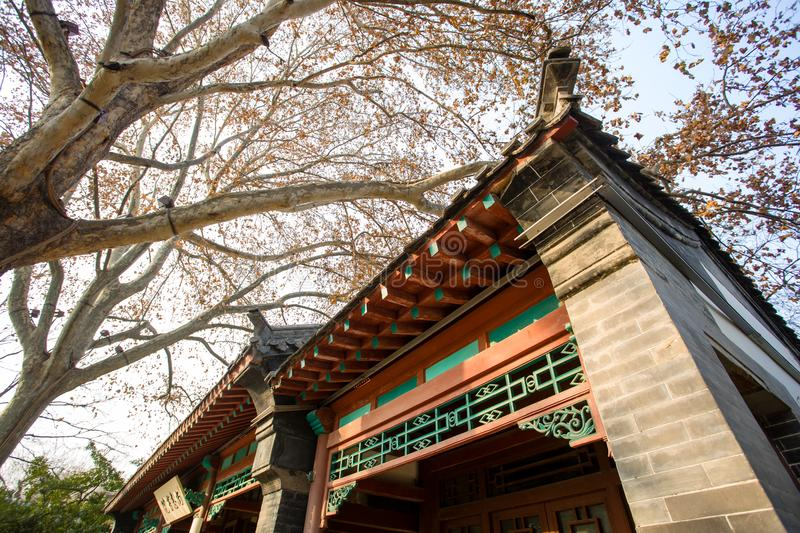 Ancient Chinese architecture window. The branches of ancient Chinese architecturen royalty free stock photo