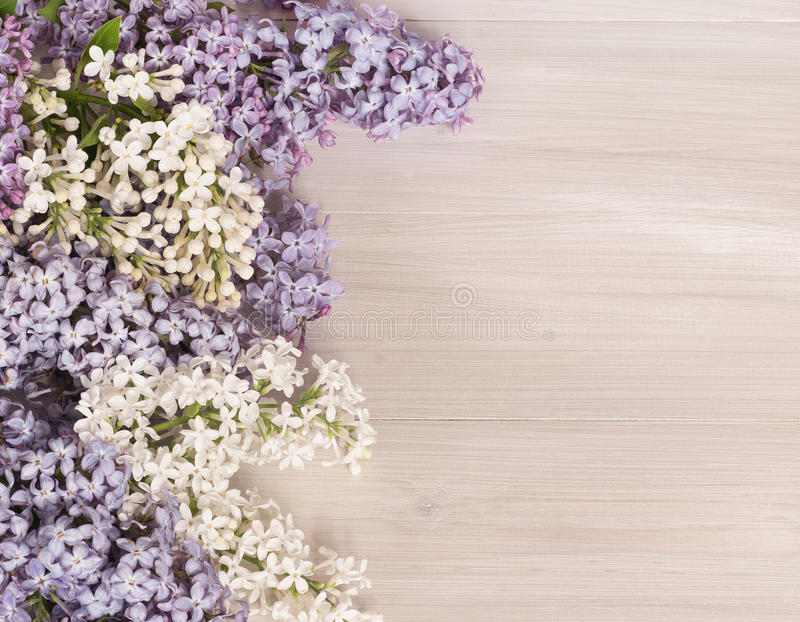 Branches of a blossoming lilac on a wooden background stock photo
