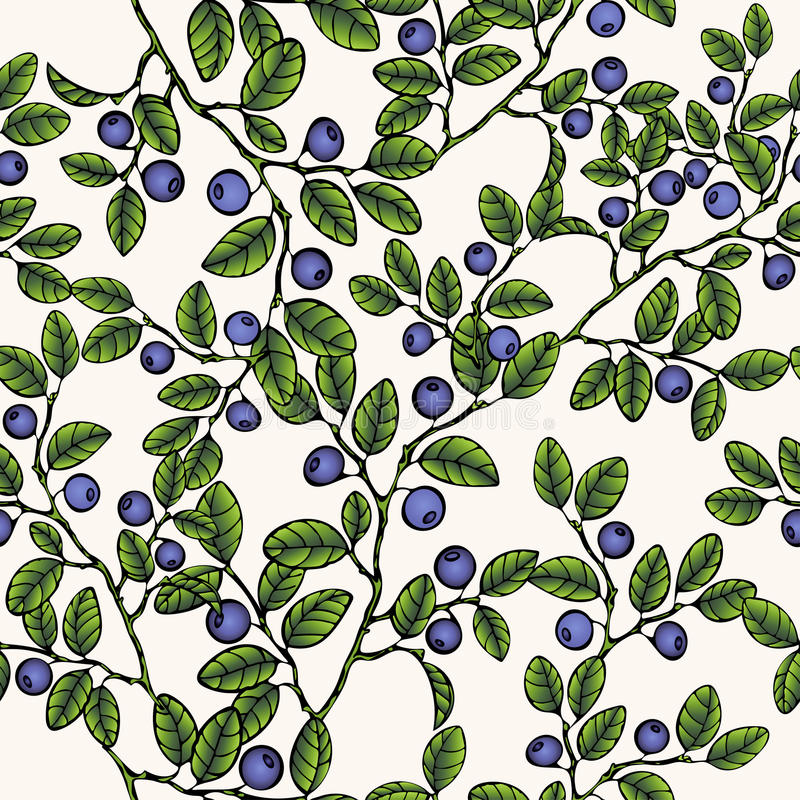 Branches of blueberries seamless pattern, berry background. Painted fruit, graphic art, cartoon. For the design the royalty free illustration