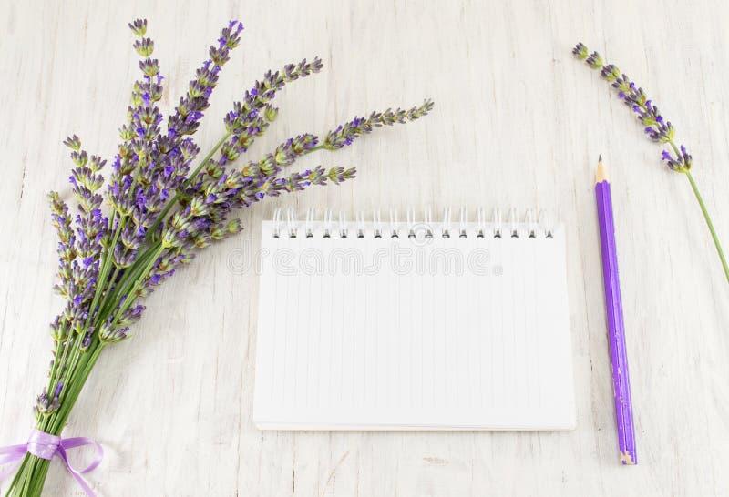 Branches, carnet et crayon de fleur de lavande images stock