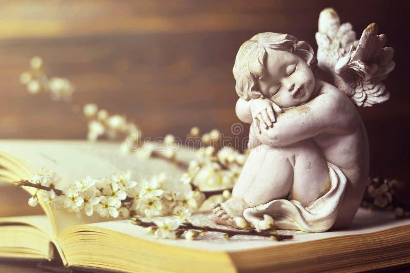 Branches d'ange gardien et de ressort sur le livre image libre de droits