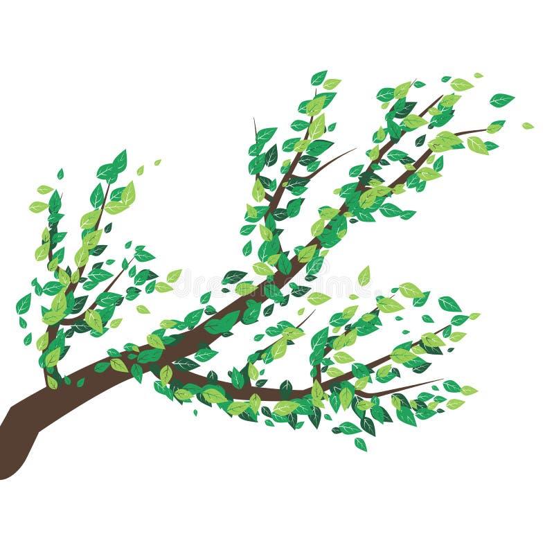 Branches d'arbre avec le sort de feuilles illustration de vecteur