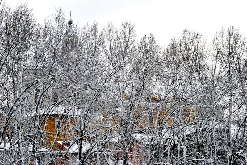 Branches d'arbre couvertes de neige dans une ville image libre de droits