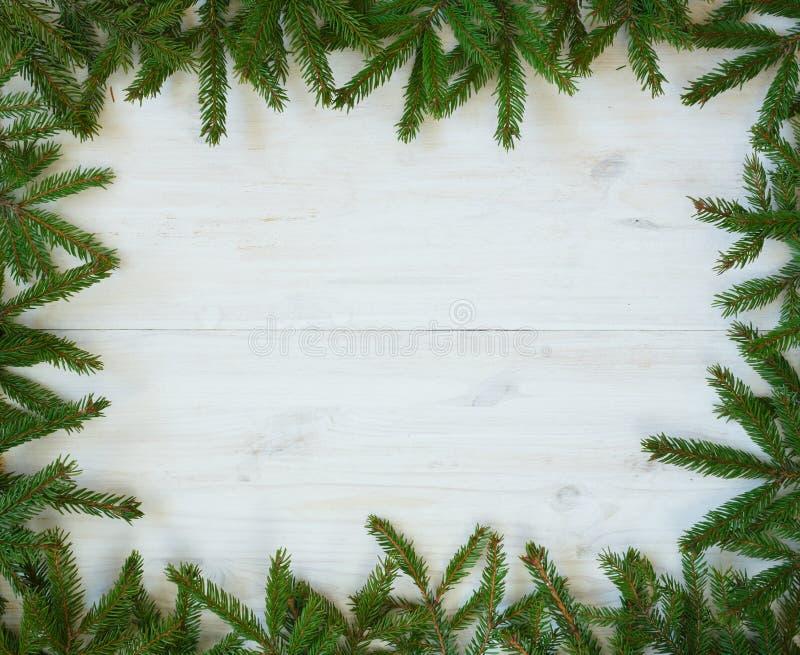 Branches d'arbre de Noël sur la texture en bois blanche prête pour votre d photo stock