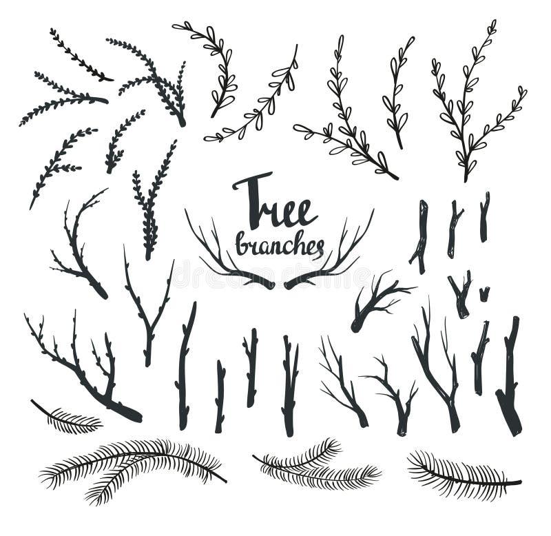 Branches d'arbre tirées par la main de vintage illustration de vecteur