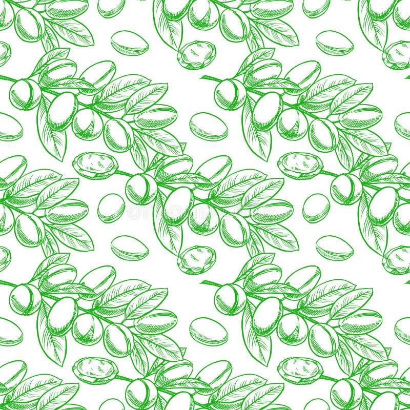Branches d'arbre vertes sans couture d'argan illustration libre de droits