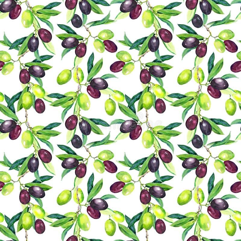 Branches d'olives Configuration sans joint watercolor illustration libre de droits