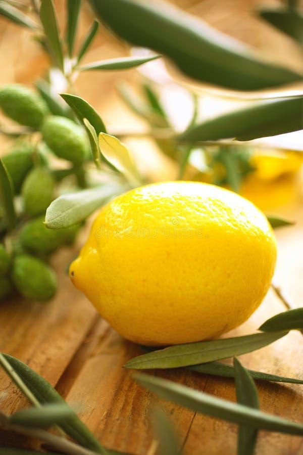 Branches d'olivier avec le citron photo stock