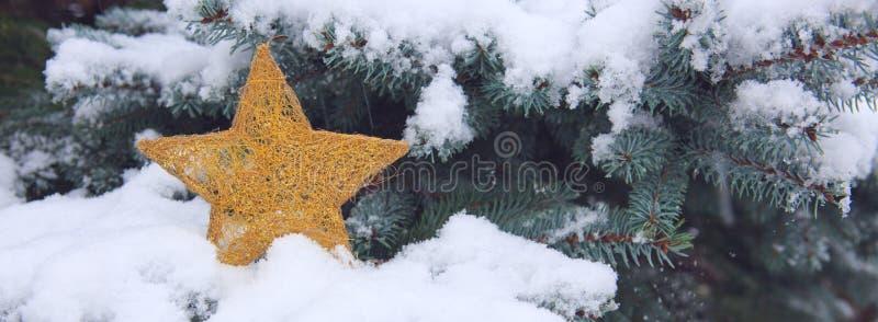 Branches de sapin de Milou avec l'étoile de Noël Fond de l'hiver images stock